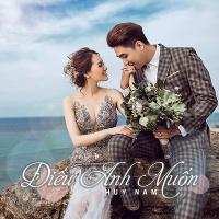 Điều Anh Muốn (Single) - Huy Nam