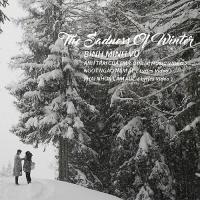 The Sadness Of Winter - Bình Minh Vũ