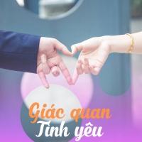Giác Quan Tình Yêu - Various Artists