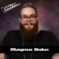 Wrecking Ball - Magnus Bokn