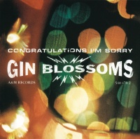 Congratulations I'm Sorry - Gin Blossoms