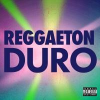 Reggaeton Duro - Luis Fonsi