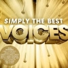 Simply The Best Voices (CD2) - Various Artists
