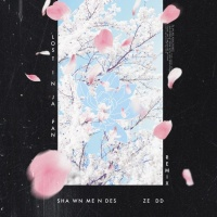 Lost In Japan Remix (Single) - Shawn Mendes
