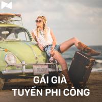 Gái Già Tuyển Phi Công - Various Artists