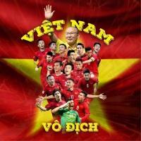 Việt Nam Vô Địch - Various Artists