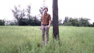 Cây Bã Đậu - Thạch Thảo