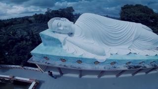 Hoa Rơi Cửa Phật - Lee Yang, Sino, Jombie