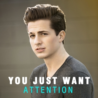 You Just Want Attention - Various Artists