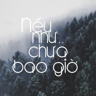 Nếu Như.. Chưa Bao Giờ - Various Artists