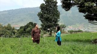 Đường Về Hai Thôn - Hương Giang, Phúc Béo