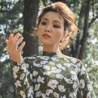 Top những bài hát hay nhất của Hồng Phấn