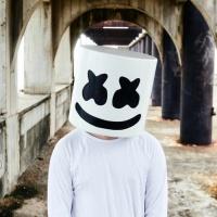 Top những bài hát hay nhất của Marshmello