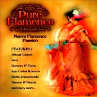 Pure Flamenco: Nuevo Flamenco Passion - Various Artists