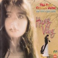 Hoang Vắng - The Best Concert Guitar - Kim Tuấn