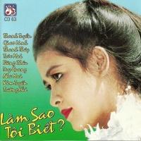 Làm Sao Tôi Biết - Various Artists