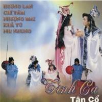 Tình Ca Tân Cổ 5 - Various Artists