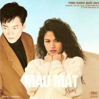 Tình Khúc Đức Huy - Màu Mắt Nhung - Various Artists
