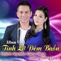 Tình Lỡ Đêm Buồn - Dương Hồng Loan, Huỳnh Nguyễn Công Bằng