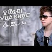 Vừa Đi Vừa Khóc (Remix) - Cao Tùng Anh