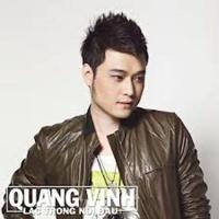 Lạc Trong Nỗi Đau (Single) - Quang Vinh