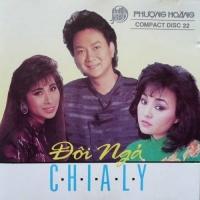 Đôi Ngả Chia Ly - Various Artists