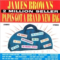 Papas Got A Brand New Bag - James Brown