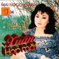 Xuân Họp Mặt - Various Artists