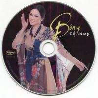 Bông Cỏ May - Various Artists