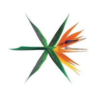 The War (4th Album) - EXO