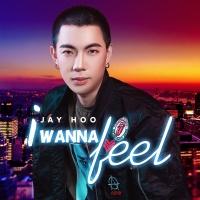 I Wanna Feel (Single) - Jay Hoo