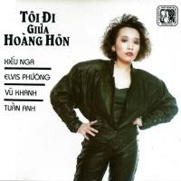 Tôi Đi Giữa Hoàng Hôn - Various Artists 1