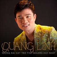 Những Bài Hát Bolero Hay Nhất Của Quang Linh - Quang Linh