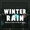 Winter Rain - Various Artists