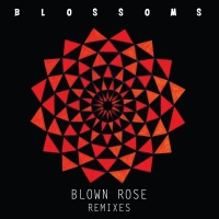 Blown Rose - Blossoms