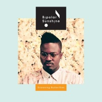 Drowning Butterflies EP - Bipolar Sunshine