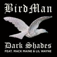 Dark Shades - Birdman