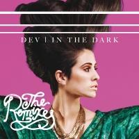 In The Dark - Dev