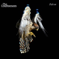 Falcon - The Courteeners