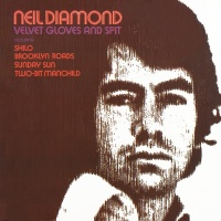 Velvet Gloves And Spit - Neil Diamond