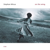 On The Wing - Stephan Micus