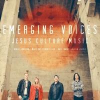 Emerging Voices - Derek Johnson