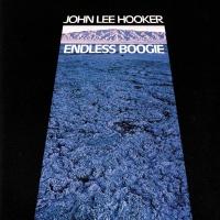 Endless Boogie - John Lee Hooker