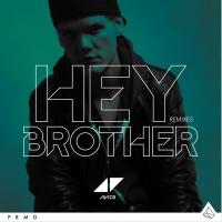 Hey Brother - Avicii