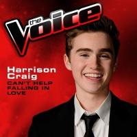 Can't Help Falling In Love - Harrison Craig