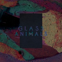 Black Mambo / Exxus - Glass Animals