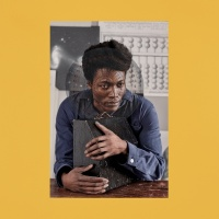 I Tell A Fly - Benjamin Clementine