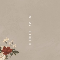 In My Blood (Single) - Shawn Mendes