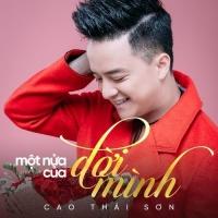 Một Nửa Của Đời Mình (Single) - Cao Thái Sơn