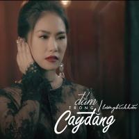 Đắm Trong Cay Đắng (New Version) (Single) - Lương Bích Hữu